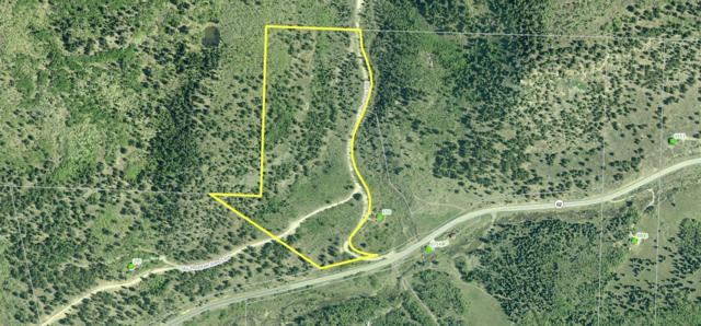 TBD Sky Mountain Ranch #1, Placerville, CO 81430 (MLS #35380) :: Telluride Properties