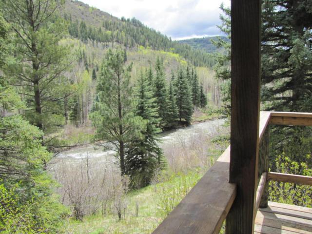 26999 Road 38, Dolores, CO 81323 (MLS #35383) :: Telluride Properties