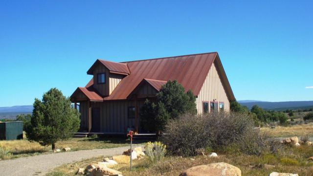 909 Mountain View, Norwood, CO 81423 (MLS #35437) :: Telluride Properties