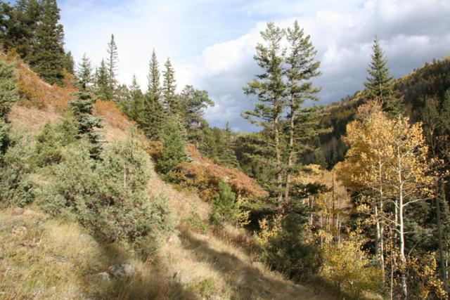 3100 Silver Pick Road, Placerville, CO 81430 (MLS #35452) :: Nevasca Realty