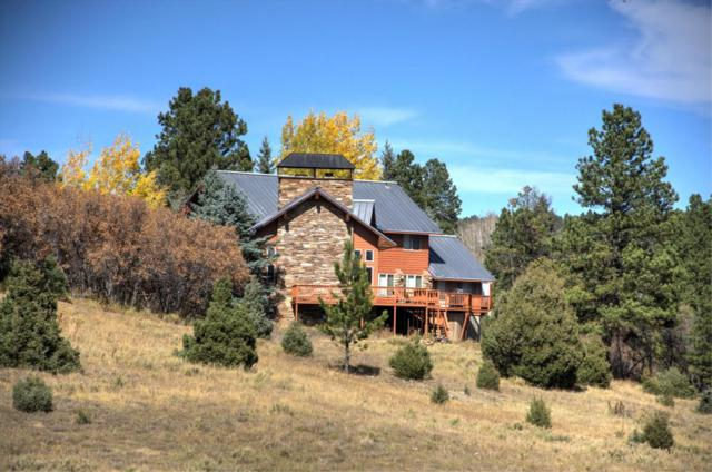 535 Bluff View Drive, Placerville, CO 81430 (MLS #35466) :: Nevasca Realty