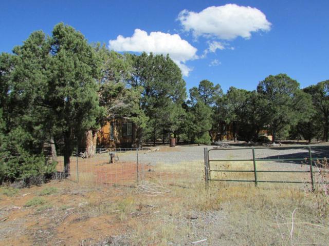 1065 Canyon Ridge Road, Montrose, CO 81403 (MLS #35467) :: Telluride Properties