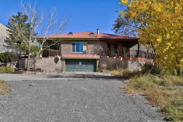69560-6952 Orion Trail, Montrose, CO 81401 (MLS #35489) :: Telluride Properties