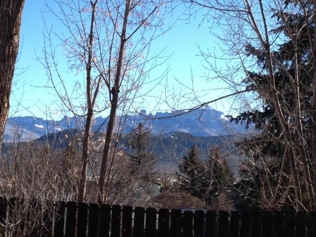 230 S Laura Street 11 & 12, Ridgway, CO 81432 (MLS #35533) :: Telluride Properties
