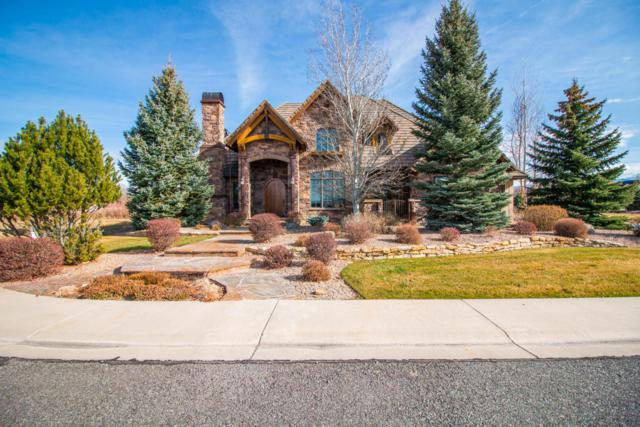 2720 Red Cliff Circle, Montrose, CO 81401 (MLS #35561) :: Telluride Properties