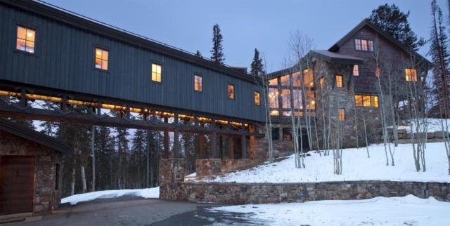 141 Sundance Lane, Mountain Village, CO 81435 (MLS #35568) :: Telluride Properties