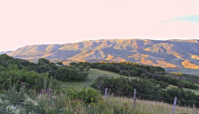 79750 Highway 50, Cimarron, Out Of Area, CO  (MLS #35580) :: Telluride Properties