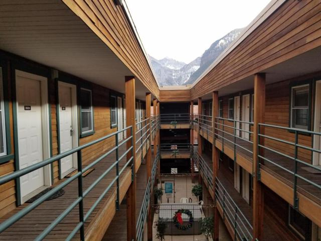 210 S Pine Street #302, Telluride, CO 81435 (MLS #35588) :: Nevasca Realty