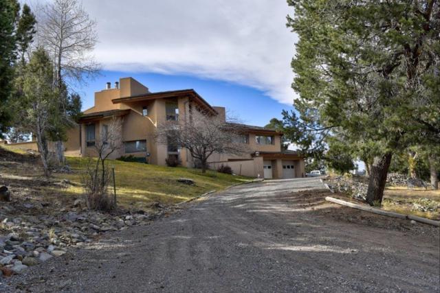 741 Terrace Drive, Ridgway, CO 81432 (MLS #35612) :: Telluride Properties