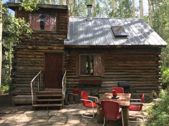 66 San Juan Vista Road, Placerville, CO 81430 (MLS #35636) :: Telluride Properties