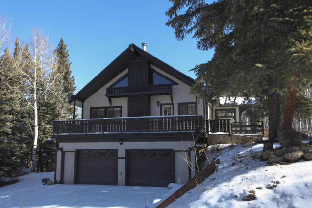 8760 Hwy 62 - Ski Dallas Ranch, Placerville, CO 81430 (MLS #35661) :: Nevasca Realty