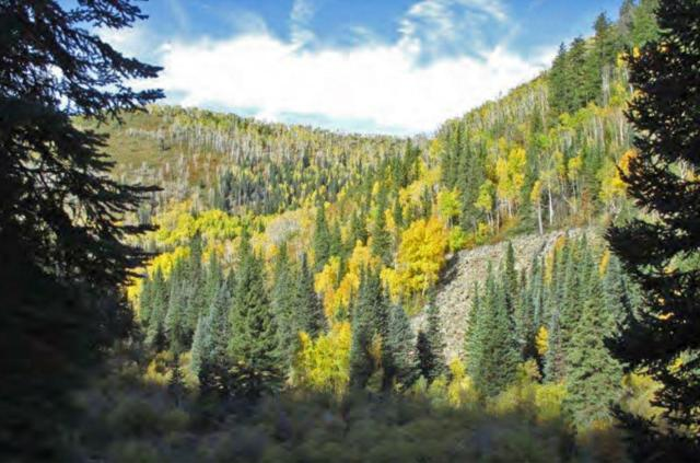 TBD Pinon Mesa, Out Of Area, CO  (MLS #35687) :: Telluride Properties