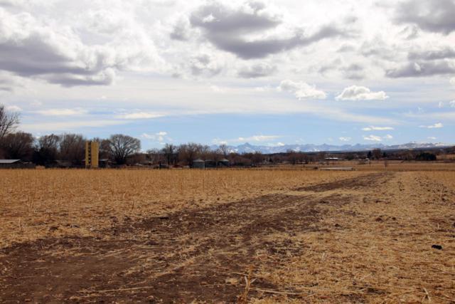 61801 Co-90, Montrose, CO 81403 (MLS #35698) :: Telluride Properties
