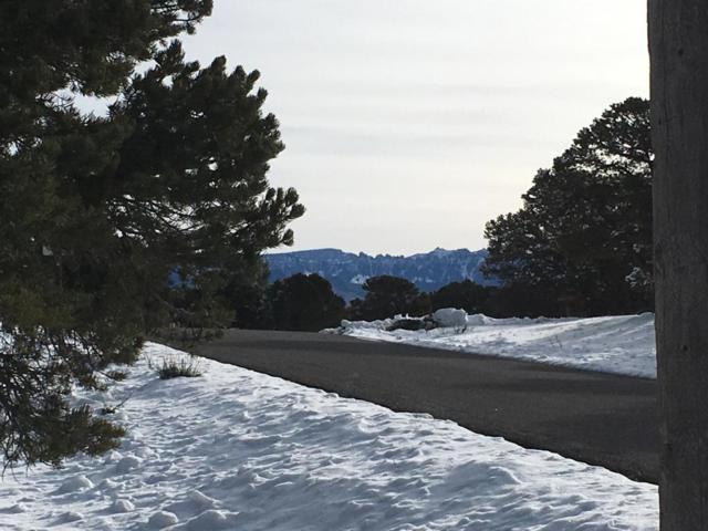 675 Pine Drive B17, Ridgway, CO 81432 (MLS #35710) :: Nevasca Realty
