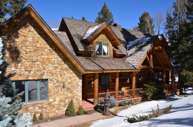 261 Adams Ranch Road, Mountain Village, CO 81435 (MLS #35769) :: Nevasca Realty