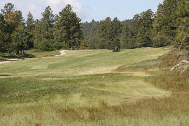 671 N Badger Trail #545, Ridgway, CO 81432 (MLS #35773) :: Telluride Properties