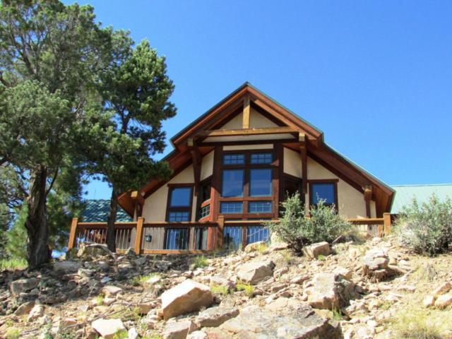 1036 Pleasant Valley, Ridgway, CO 81432 (MLS #35843) :: Telluride Properties