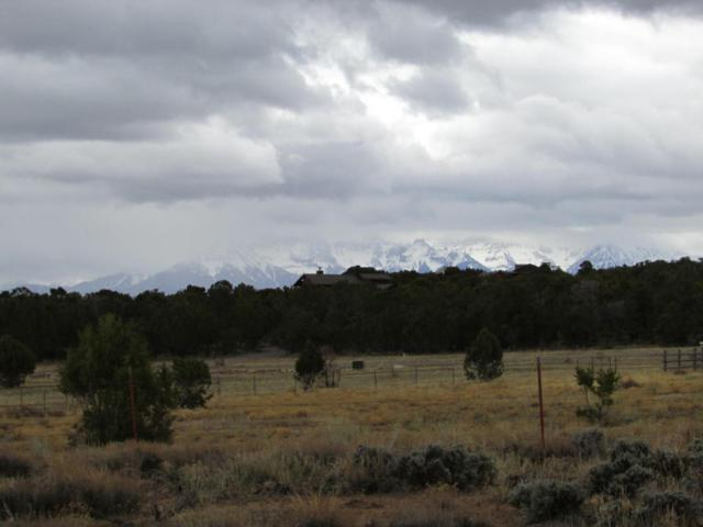 Lot 5 Mountain Vista Court, Montrose, CO 81403 (MLS #35895) :: Nevasca Realty