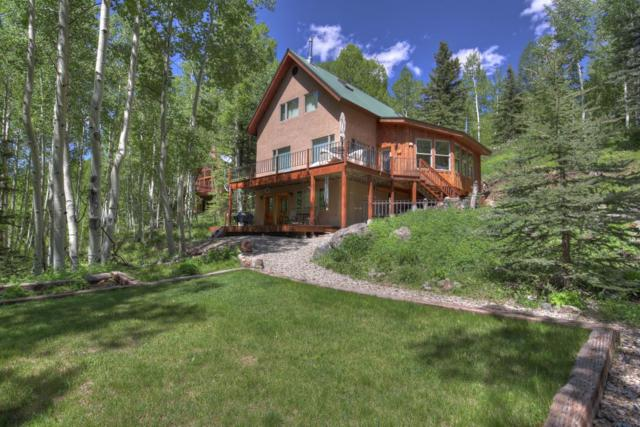 131 N Van Winkle Avenue, Rico, CO 81332 (MLS #35909) :: Telluride Properties