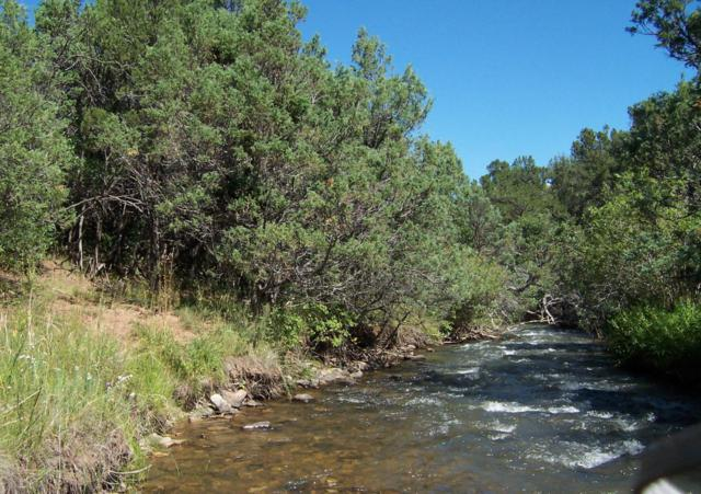tbd V44 Road #6, Norwood, CO 81423 (MLS #35918) :: Nevasca Realty