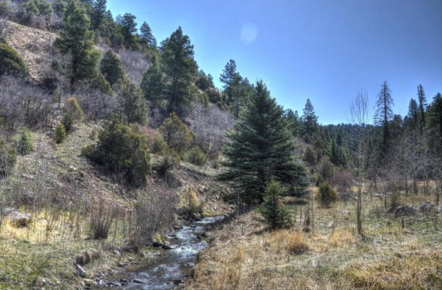 TBD 56V Road 12A, Placerville, CO 81430 (MLS #35930) :: Telluride Properties