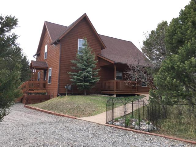 52 S Tower Road, Ridgway, CO 81432 (MLS #35947) :: Nevasca Realty