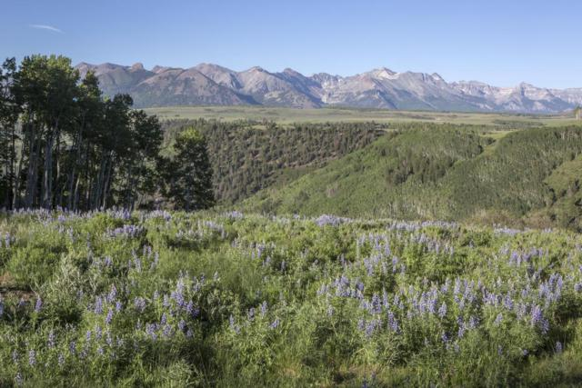 TBD Porcupine Road, Placerville, CO 81430 (MLS #35969) :: Telluride Properties