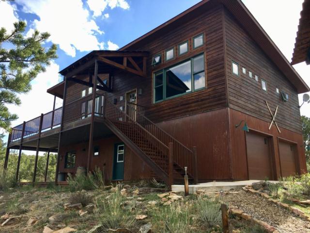 99 Willow Lane, Ridgway, CO 81432 (MLS #35970) :: Telluride Properties