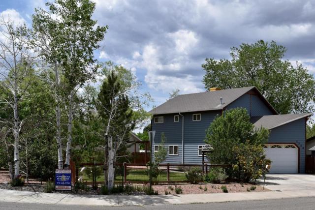 2772 Cimarron Street, Montrose, CO 81401 (MLS #35997) :: Telluride Properties