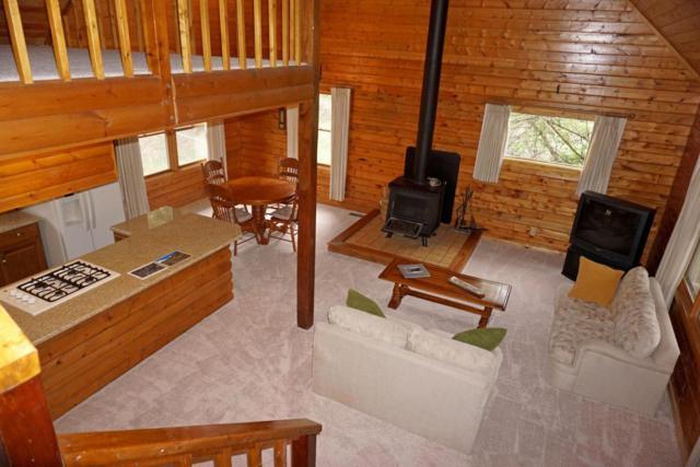219 Juniper Village Drive, Placerville, CO 81430 (MLS #36002) :: Telluride Properties