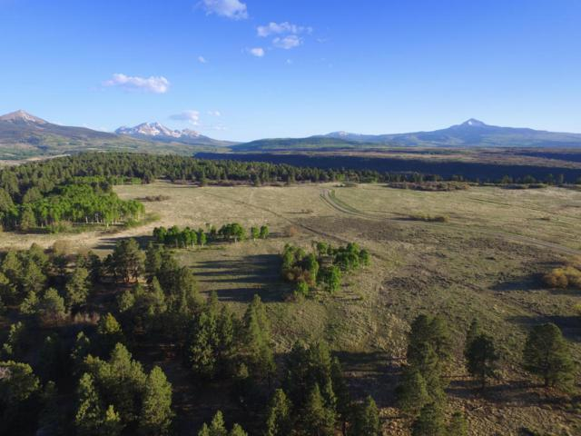 TBD Peninsula Drive 27 & 28, Placerville, CO 81430 (MLS #36026) :: Telluride Properties