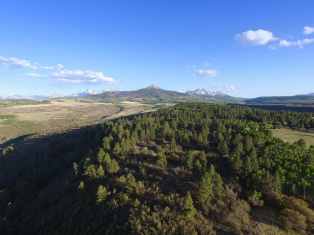 TBD Peninsula Drive #28, Placerville, CO 81430 (MLS #36028) :: Telluride Properties