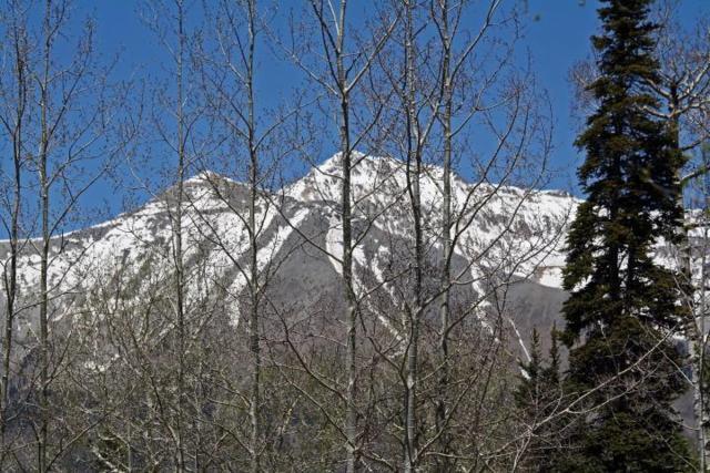 TBD Saddle Horn Lane, Telluride, CO 81435 (MLS #36032) :: Nevasca Realty
