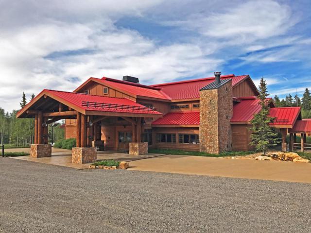 97 Elk Walk Road, Montrose, CO 81403 (MLS #36037) :: Telluride Properties