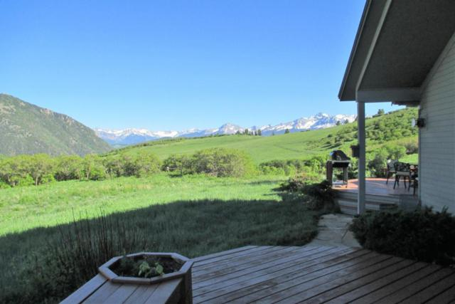 395 Flying Husky Trail, Placerville, CO 81430 (MLS #36087) :: Telluride Properties