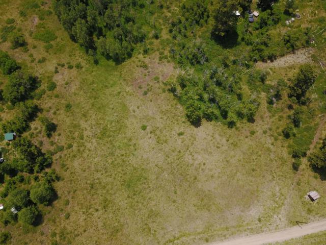 50 Spruce Lane #502, Ridgway, CO 81432 (MLS #36103) :: Telluride Properties