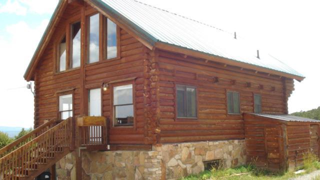 704 La Mesa Vista Drive, Norwood, CO 81423 (MLS #36104) :: Nevasca Realty