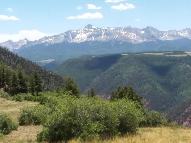 100 Hidden Bear Road 1, 2 & 3, Placerville, CO 81430 (MLS #36121) :: Telluride Properties