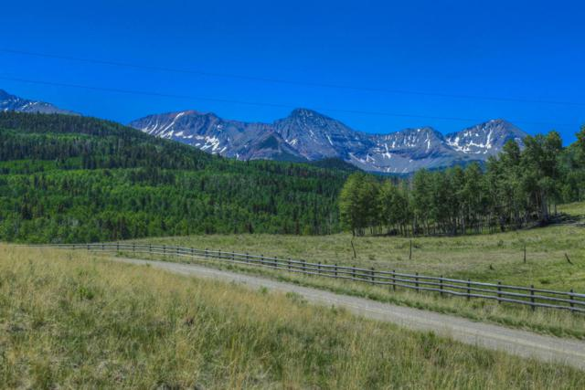 TBD Summit Dr., Placerville, CO 81430 (MLS #36123) :: Nevasca Realty