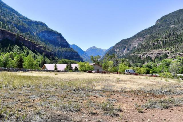 71 Hoag Court #3, Ouray, CO 81427 (MLS #36135) :: Telluride Properties