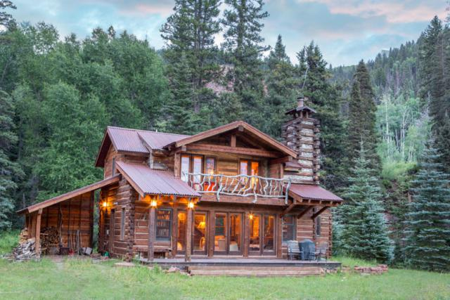 52032 W Fork Road, Dolores, CO 81323 (MLS #36139) :: Nevasca Realty
