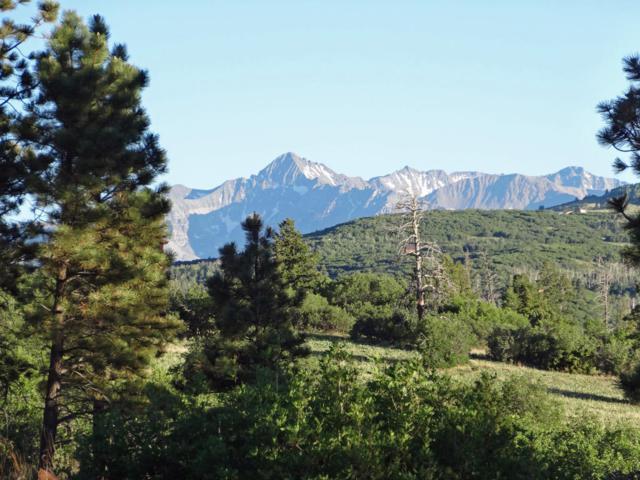 TBD Green Meadows Lane #111, Placerville, CO 81430 (MLS #36155) :: Telluride Properties