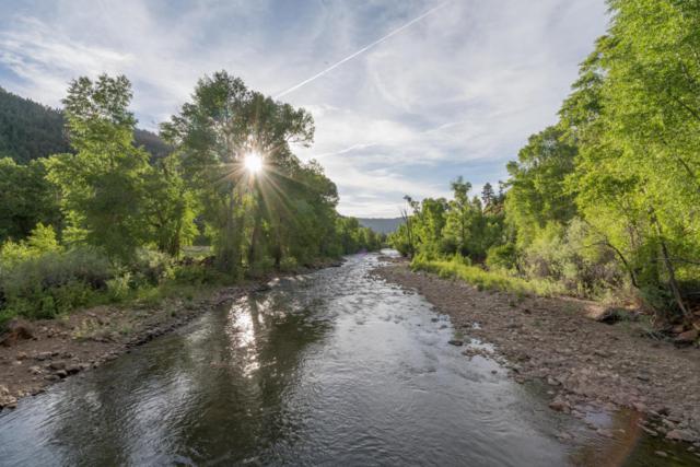 26510 Highway 145, Dolores, CO 81323 (MLS #36160) :: Telluride Properties