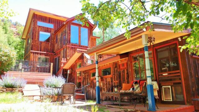 155 Trunk Road, Placerville, CO 81430 (MLS #36166) :: Telluride Properties