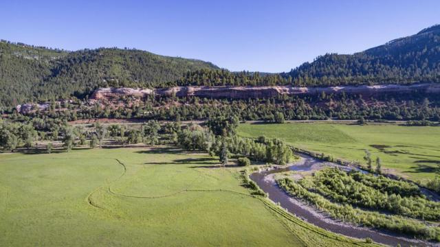 25955 Co-145, Dolores, CO 81323 (MLS #36177) :: Telluride Properties