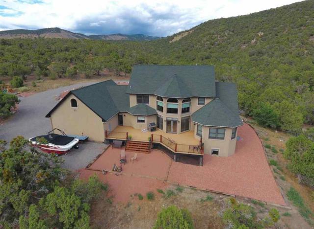 23422 7250 Road, Montrose, CO 81403 (MLS #36196) :: Telluride Properties
