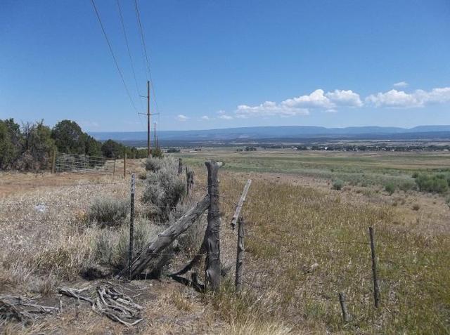 tbd County Road Y 43, Norwood, CO 81423 (MLS #36220) :: Telluride Properties