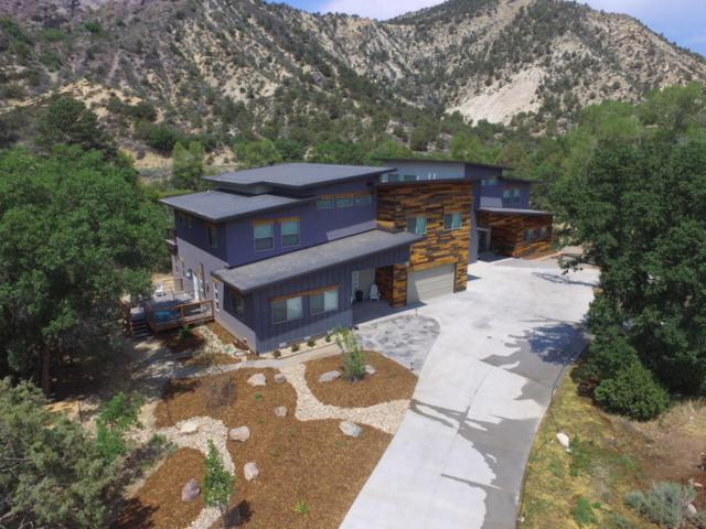 143 River Oaks Drive, Out Of Area, CO 81303 (MLS #36223) :: Telluride Properties