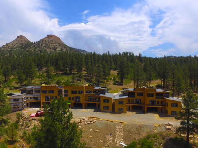 1115 Twin Buttes Avenue, Out Of Area, CO  (MLS #36225) :: Telluride Properties