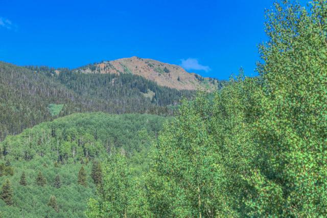 452 Silverglance Way #7, Rico, CO 81332 (MLS #36232) :: Telluride Properties